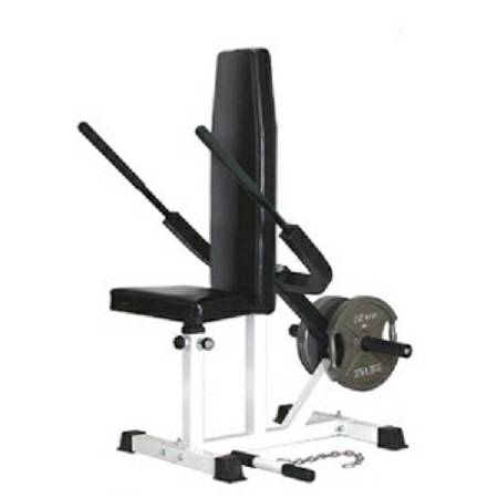 Ader Seated Tricep Triceps Press Down Dip Dips Bench Hs 7605 Buy Fitness Online