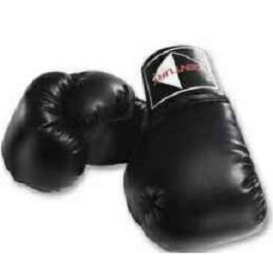 Century Leather Speed Bag Glove Gloves Karate Sparring Punching