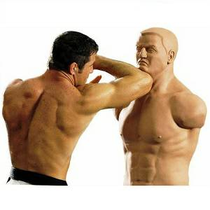 Century Martial Arts BOB Boxing Punching Kicking Torso Heavy Bag